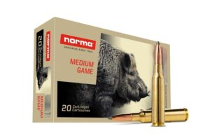Norma 6